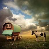 gypsy wagonand horse